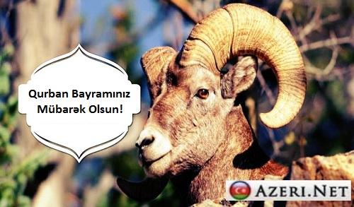 Qurban Bayrami Tebrik Mesajlari 2014 Xəbərci Son Xəbərlər Xəbər